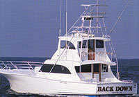 Charter Boat Back Down 2