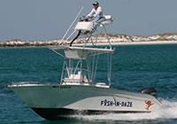 Charter Boat Fish-In-Daze