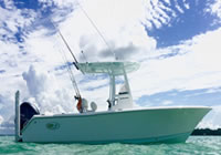 Charter Boat Insight Outfitters