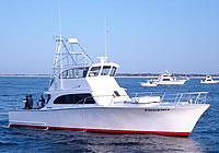 Charter Boat Phoenix