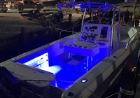 Charter Boat Reel Crazy