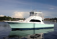 Charter Boat Seahorse